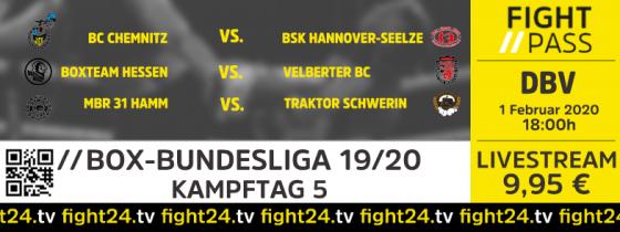fight24 | BOX-BL Kampftag 5